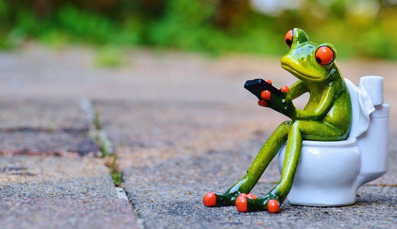 トイレに座ってスマホをいじっているカエル